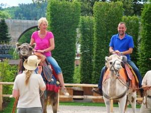 grünzeug unterwegs auf der LGS in Nagold: Andrea Müller und Volker Kugel reiten auf Drusilla und Blümchen