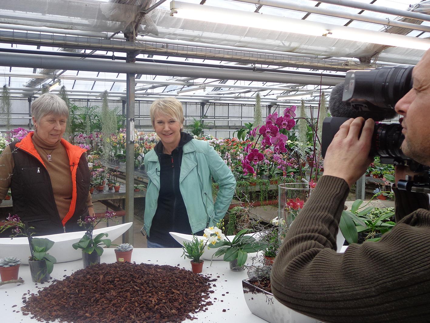 grünzeug-Dreh Andrea Mueller für die Frühlingsstaffel 2014 in der Orchideengärtnerei Metzger in Schönaich