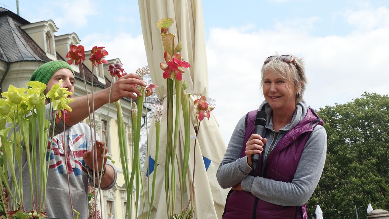 Bühnenmoderation zum Thema ''Fleischfressende Pflanzen'' auf den Barocken Gartentagen im Blühenden Barock in Ludwigsburg, Mai 2017 Andrea Müller